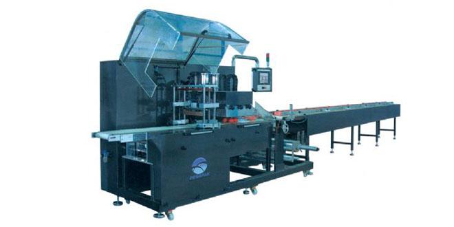 DP-50 Gezer Çene Yatay Ambalaj Makinesi